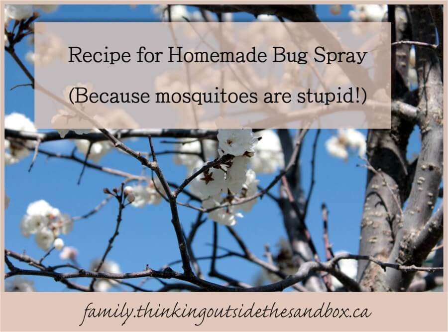 Easy recipe for homemade bug spray plus a tip for those times when you don't want to smell like bug spray!) - Thinking Outside the Sandbox: Family