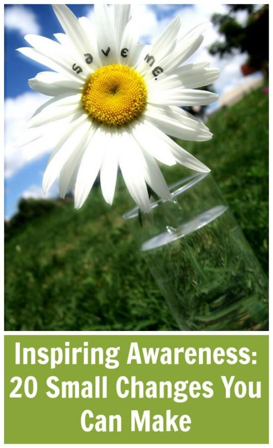 Inspiring Awareness: 20 Small Changes You Can Make ~ Earth Day 2014