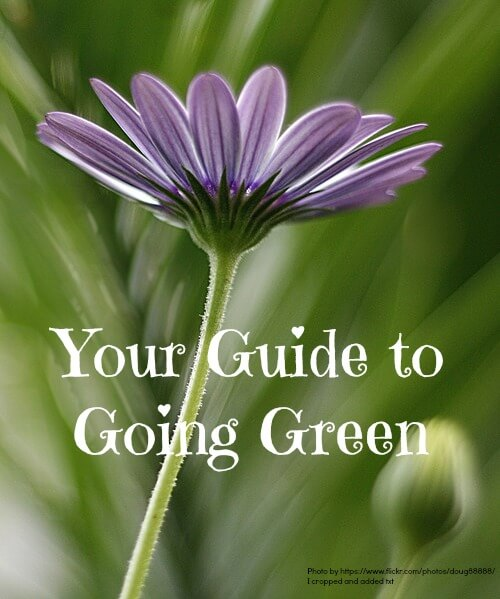 your guide for going green