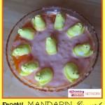 Frosty Mandarin Dessert, Thinking Outside the Sandbox Family