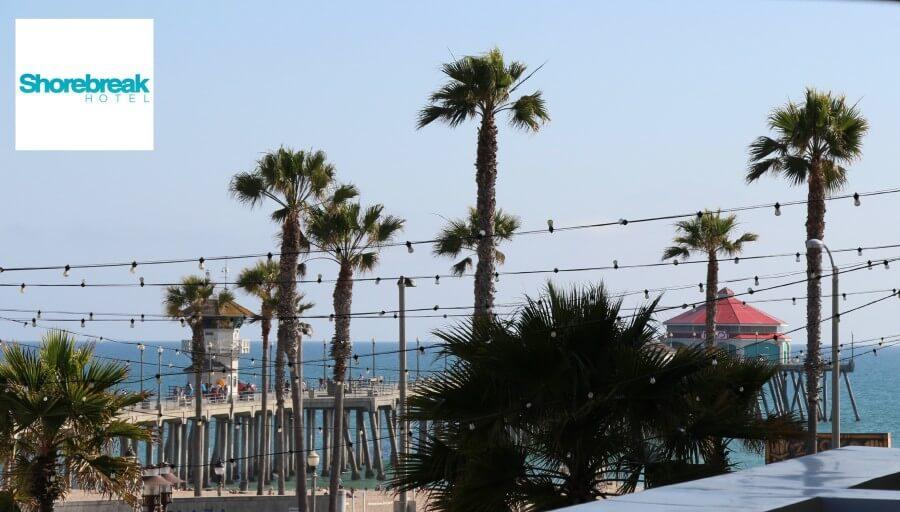 shorebreak view