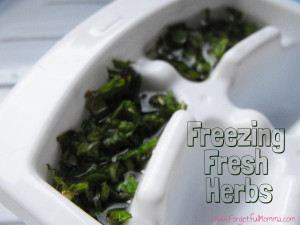 TOTS Family, Parenting, Kids, Food, Crafts, DIY and Travel freezing_herbs_4-300x225 How to Freeze Fresh Herbs Food Gardening Miscellaneous Recipes TOTS Family  herbs gardening Fresh Herbs freezer freeze cooking