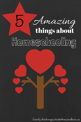 5 Amazing Things About Homeschooling