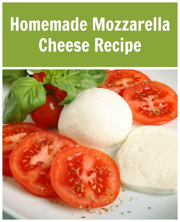 If you love the taste of fresh mozzarella you are going to love this Homemade Mozzarella Recipe!
