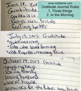 Gratitude Journal Rules and Examples