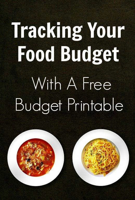 TOTS Family, Parenting, Kids, Food, Crafts, DIY and Travel Tracking-Your-Food-Budget-With-A-Free-Budget-Printable Tracking Your Food Budget (With a Printable) Food Home TOTS Family  spreadsheet printable grocery budget groceries food budget financial tracker debt budget