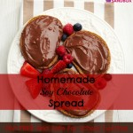 Homemade Soy Chocolate Spread: nut free and school safe.