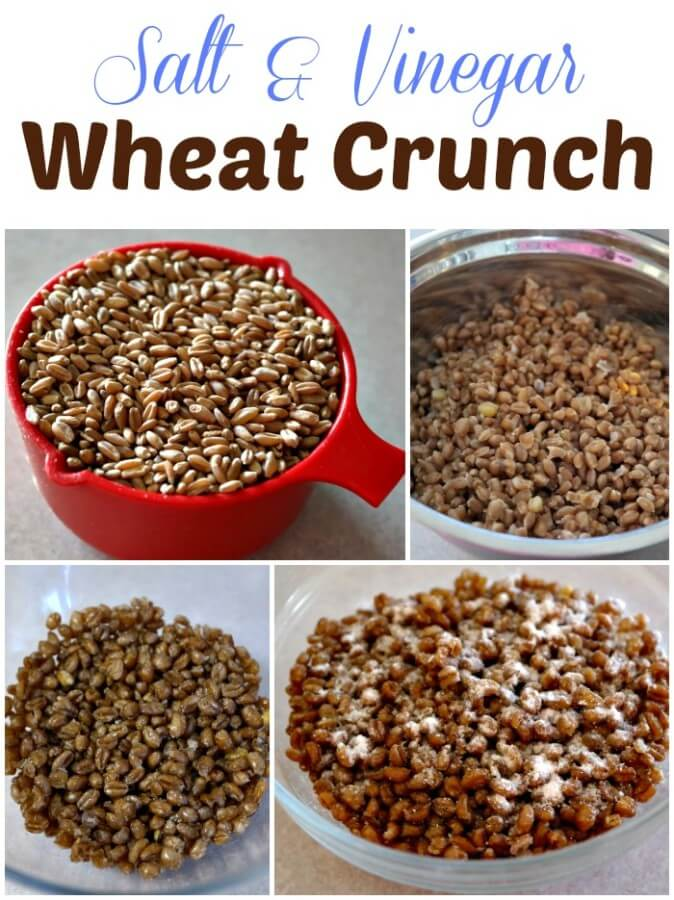 Salt and Vinegar Wheat Crunch