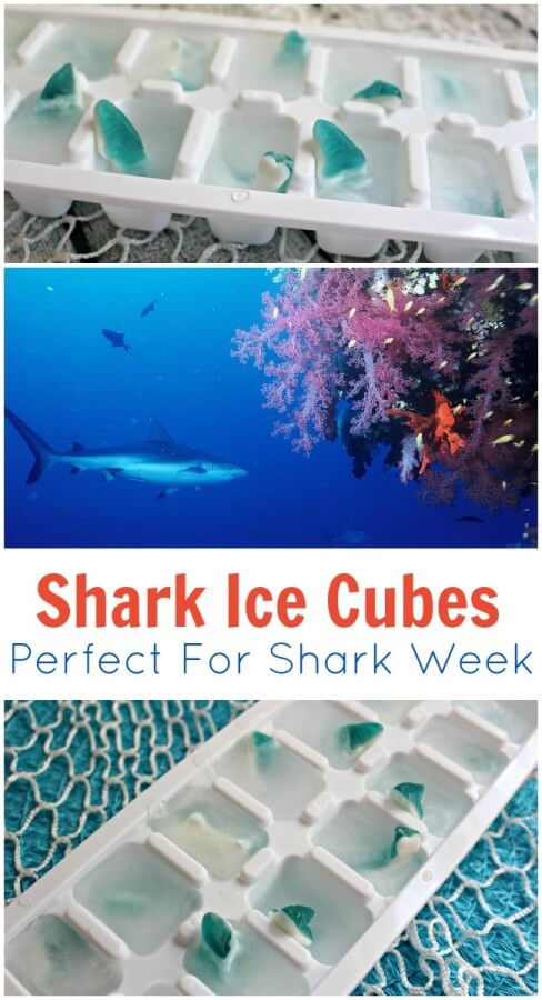 TOTS Family, Parenting, Kids, Food, Crafts, DIY and Travel Shark-Ice-Cubes-Perfect-For-Shark-Week-tall Shark Ice Cubes - Perfect For Shark Week DIY Food Holiday Treats Kids Miscellaneous Recipes TOTS Family Uncategorized  shark week shark ice cubes party ideas kids food diy