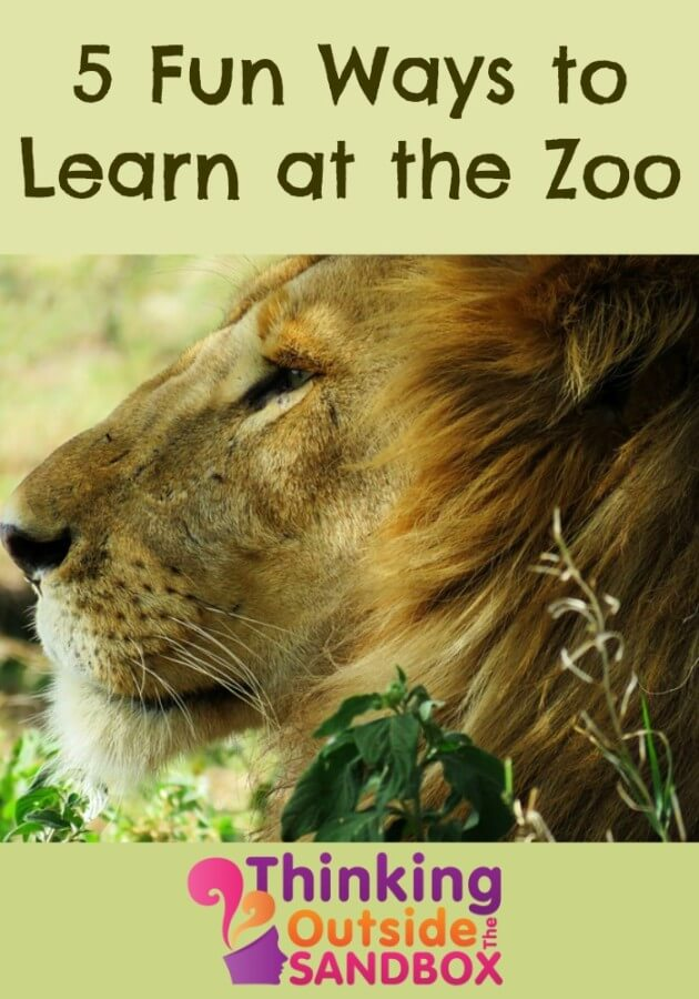 TOTS Family, Parenting, Kids, Food, Crafts, DIY and Travel 5-Fun-Ways-to-Learn-at-the-Zoo 5 Fun Ways to Learn at the Zoo Kids Parenting TOTS Family Travel