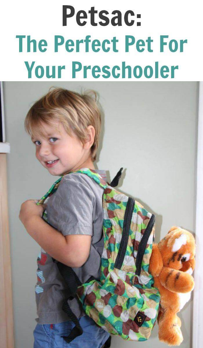 Petsac: The Perfect Pet For Your Preschooler