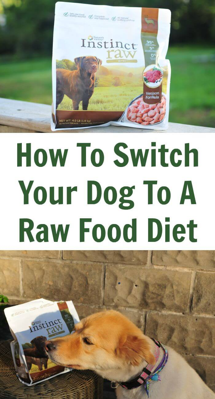 how to cook raw food for dogs