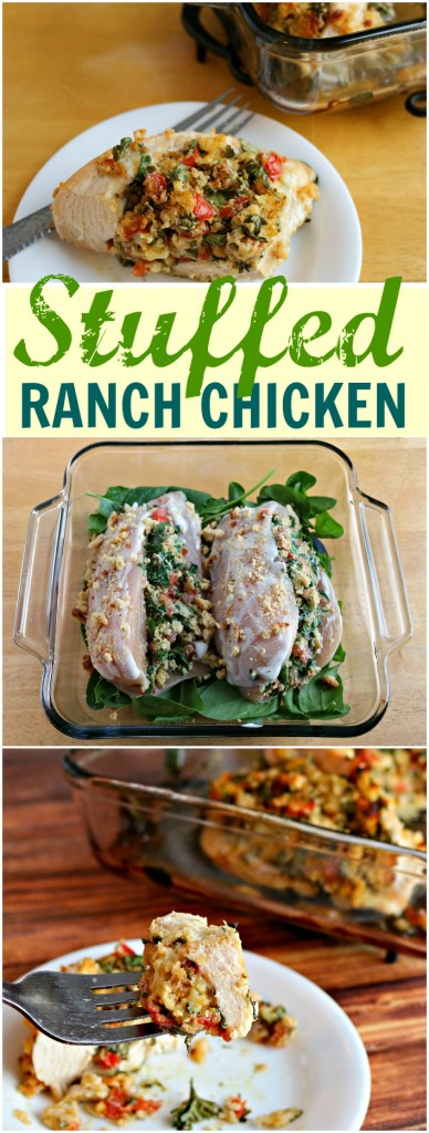 TOTS Family, Parenting, Kids, Food, Crafts, DIY and Travel stuffed-chicken-pin--388x1024 Spinach and Tomato Stuffed Ranch Chicken Recipe Food Main Dish TOTS Family  recipe chicken