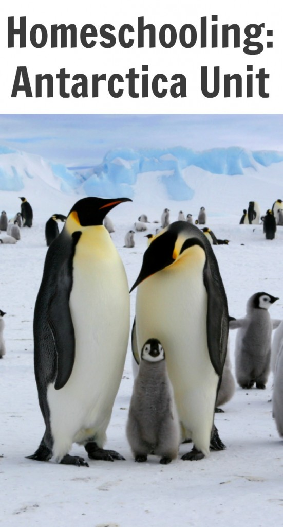TOTS Family, Parenting, Kids, Food, Crafts, DIY and Travel Homeschooling-Antarctica-Unit-551x1024 Homeschooling: Antarctica Unit Kids Parenting TOTS Family  penguins homeschooling explorers antarctica unit