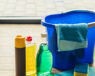 Spring cleaning? Not so much. So Spring Cleaning Tips for Kids is of little interest to . . . Kids.
