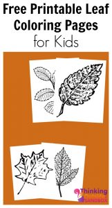 TOTS Family, Parenting, Kids, Food, Crafts, DIY and Travel Free-Printable-Leaf-Coloring-Pages-for-Kids-162x300 Free Printable Leaf Coloring Pages Crafts Kids TOTS Family Uncategorized  toddlers kids activities fall scavenger hunt fall activities fall