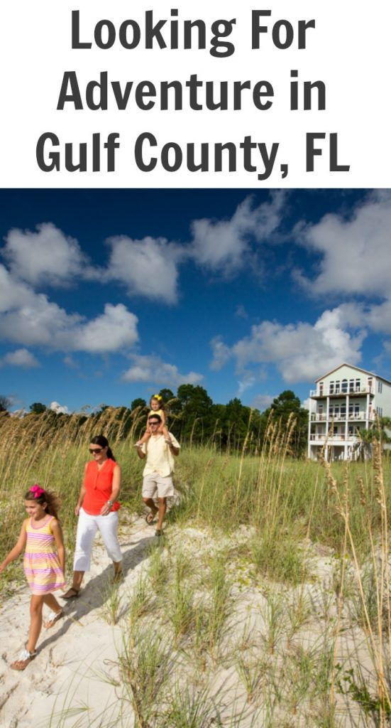 Looking For Adventure in Gulf County Florida
