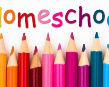 Pros And Cons Of Homeschooling
