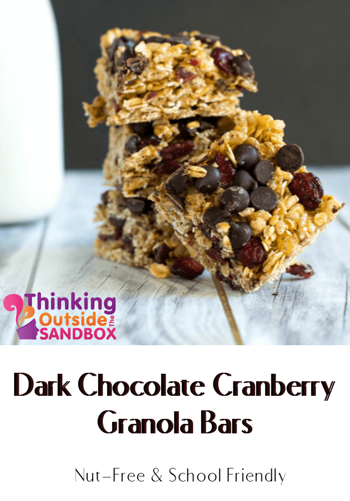 TOTS Family, Parenting, Kids, Food, Crafts, DIY and Travel Granola-Bars-TOTS Dark Chocolate Cranberry Granola Bars Desserts Miscellaneous Recipes TOTS Family  recipe kids snack granola bar food crunchy snack cranberry