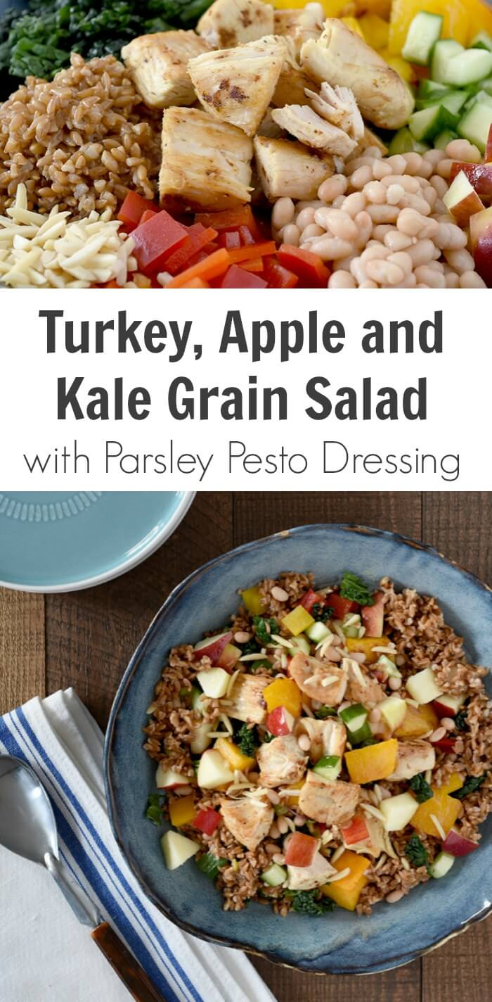 TOTS Family, Parenting, Kids, Food, Crafts, DIY and Travel Turkey-Apple-and-Kale-Grain-Salad-with-Parsley-Pesto-Salad-Dressing How to Prepare a Tasty and Nutritious Meal for your Family Breads/Soups/Salads Food Main Dish Sponsored TOTS Family  canadian turkey