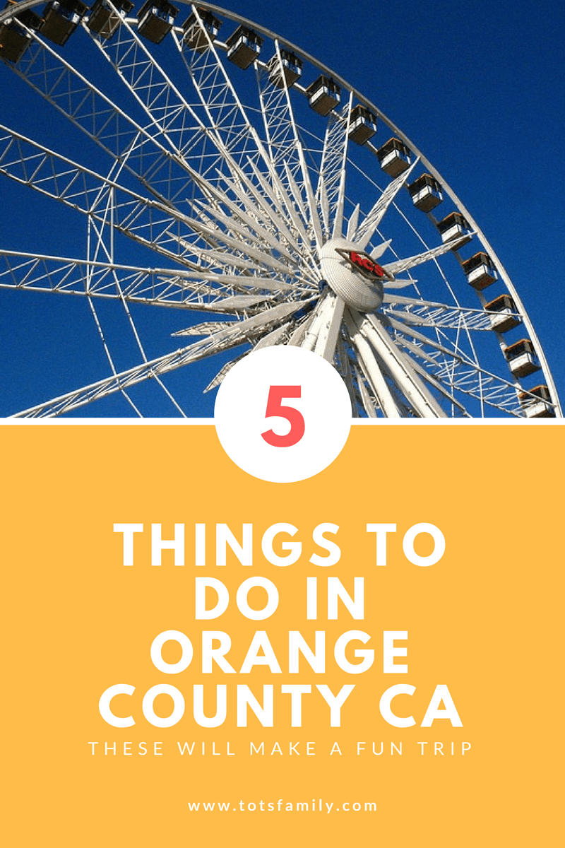 5 Things To Do In Orange County