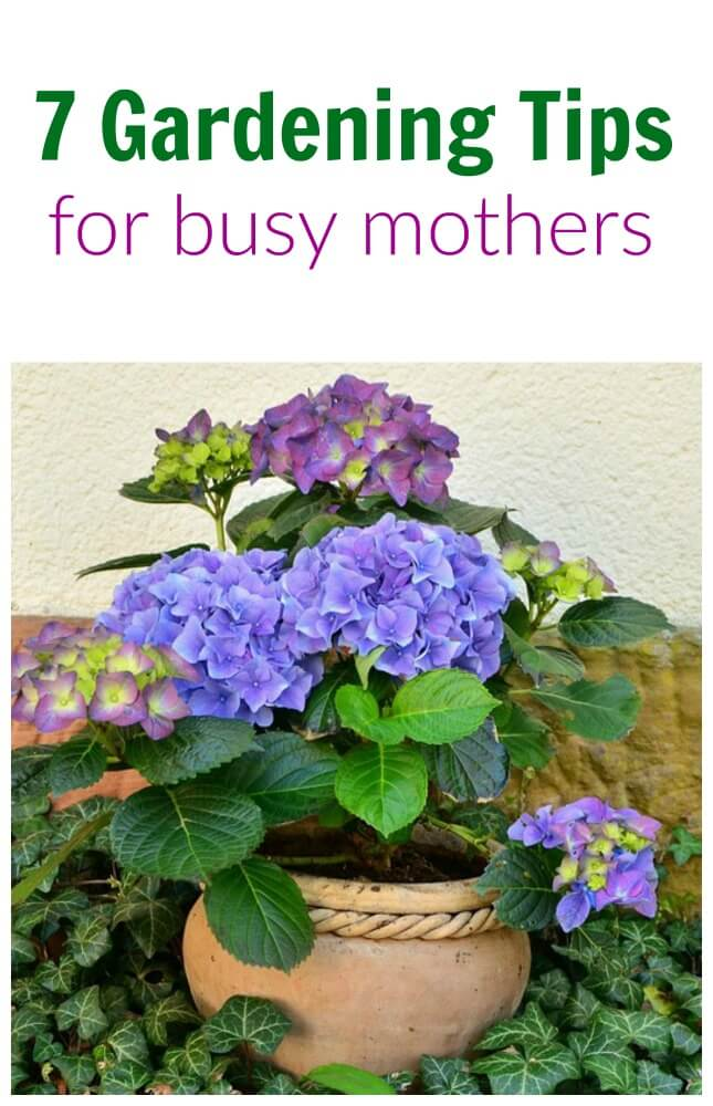 7 Gardening Tips for Busy Mothers How do I find time to garden with 8 children? The answer is, I don't. Well, not that much. 7 Gardening Tips for Busy Mothers