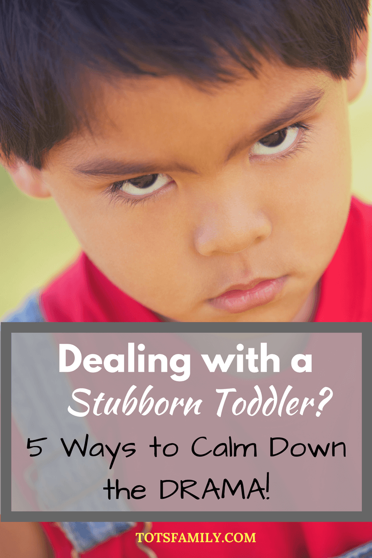Today I decided to share with you some of my favorite tips on dealing with a stubborn toddler. You can survive this difficult phase with a little smart parenting!
