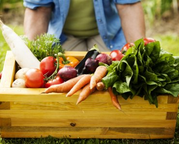 Best Fruits and Vegetables to Plant in Springtime. To enjoy the pickings from the garden, you need to plant certain fruits and veggies in springtime.