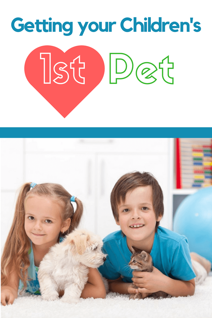 TOTS Family, Parenting, Kids, Food, Crafts, DIY and Travel Getting-your-Childrens-First-Pet Getting Your Children's First Pet Parenting Pets TOTS Family  pets pet Getting a Pet First Pet