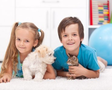 When you're thinking about getting your children's first pet, There are so many positive rewards to animal ownership when it comes to including a pet as a part of your family.