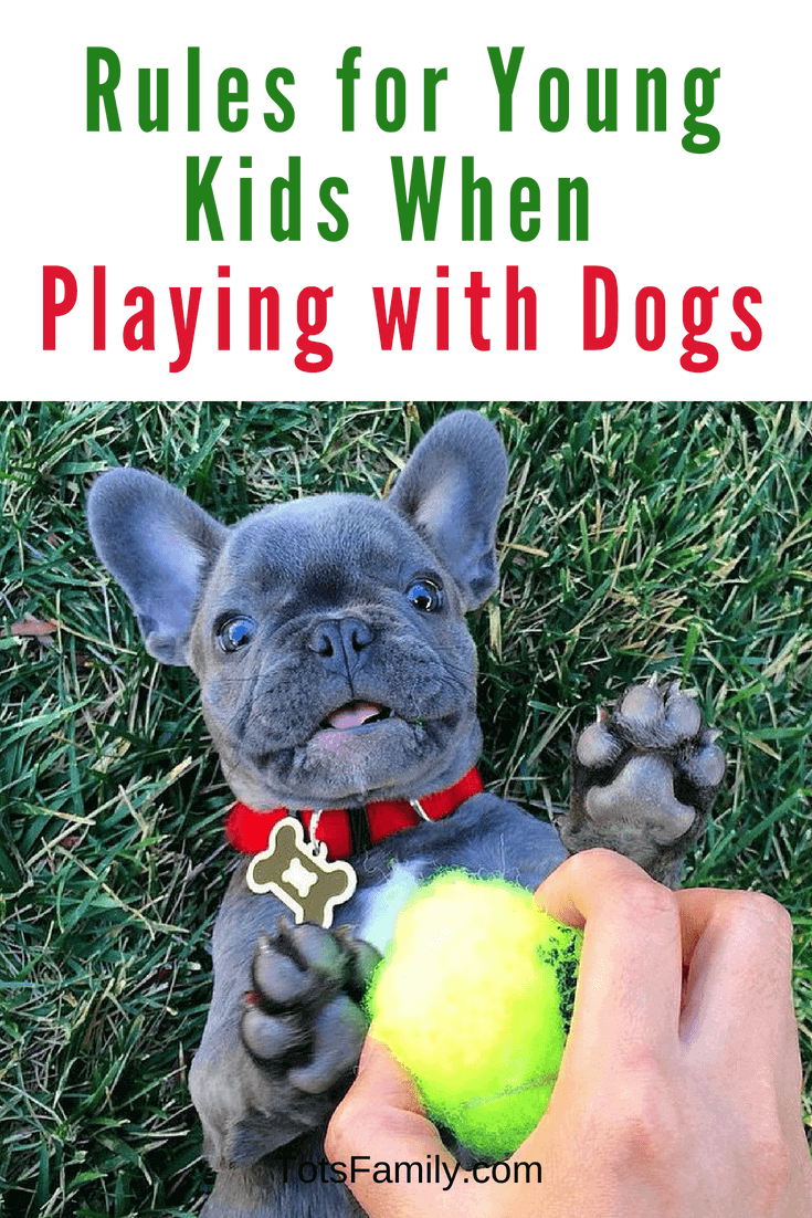 5 Ground Rules for Young Kids When Playing with Dogs