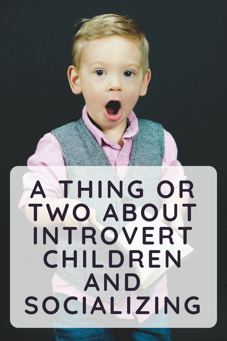 As a school counselor and an introvert myself, I will do my best to present my point of view and give a few tips to help parents of introvert children understand them better.